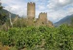 Castello di Chatel Argent
